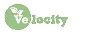 Velocity Online Logo
